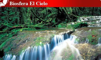 Biosfera El Cielo, Tamaulipas